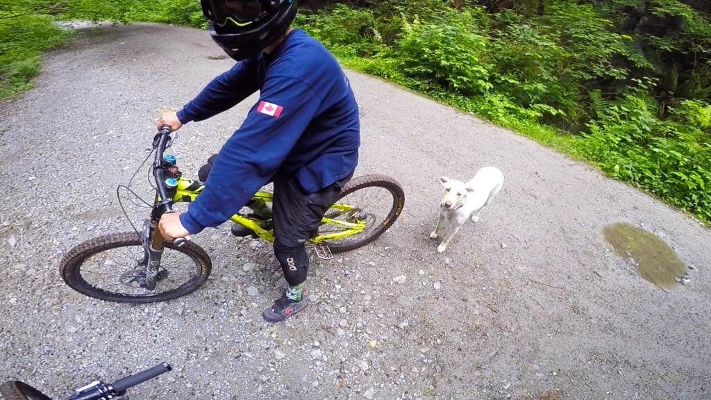 braap-trail-burke-mountain-canada-2