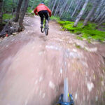 b-Line-trail-lower-whistler-bike-park-owlaps-photo-4-HD