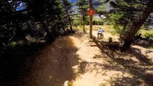 les-sapins-bike-trail-les-2-alpes-bike-park-photo-1-HD