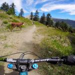 traverse-de-chêne-serre-chevalier-bike-park-france-photo-4-HD-bis