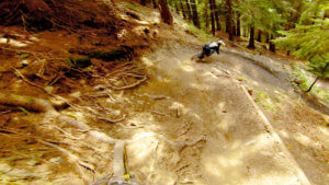 chevreuil-champery-bikepark-photo-3-HD